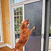 Fido met his match with our flexible, vinyl coated polyester pet screen. Seven times stronger than traditional screening, our screen door protector for pets is puncture proof and comes equipped with all the tools you need to install.