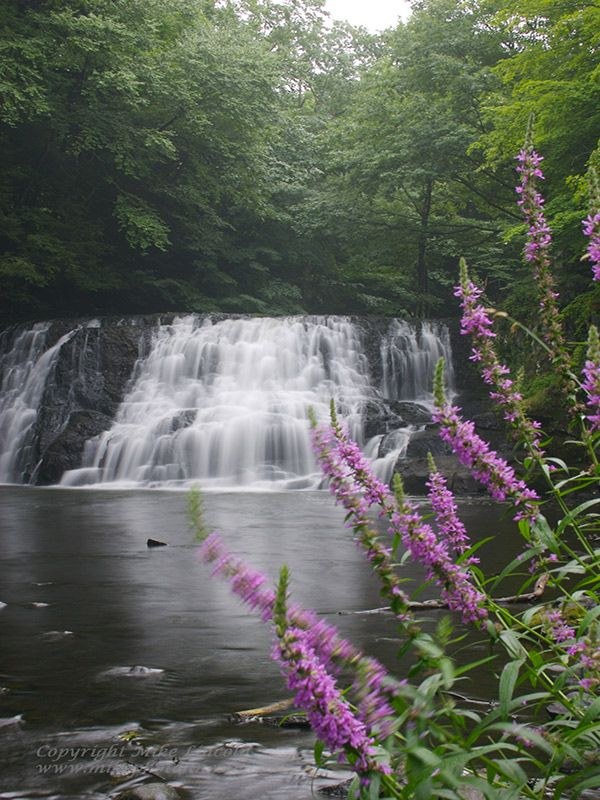 Wadsworth Falls State Park, a Connecticut park located near Berlin, Branford and Bristol