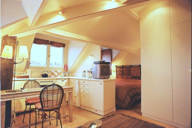Beautiful kitchen in eve Paris apartment