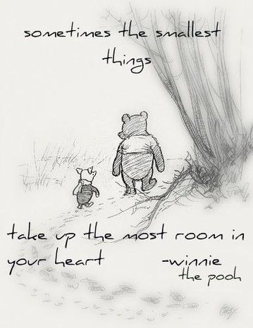 pooh-bear-quotes….