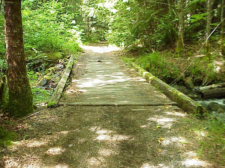 Log Train Trail - surrounds Port Alberni BC - great dog walking trail, watch for beavers, bears and deer :-)