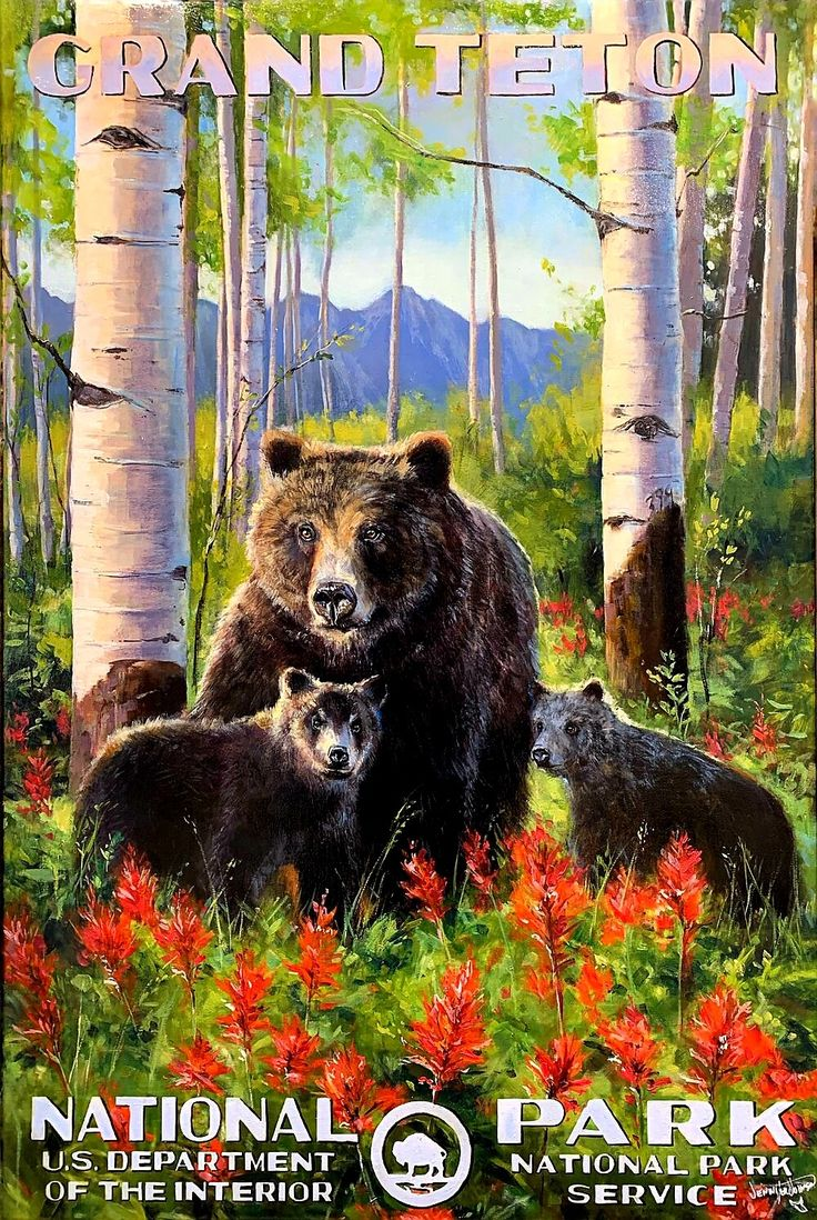 By Jennifer Johnson in 2020 (With images) National park
