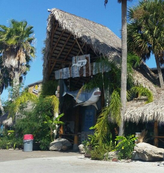 Beach House Rentals In Corpus Christi: 307 Best Port Aransas Beach House Rental, Sites, And