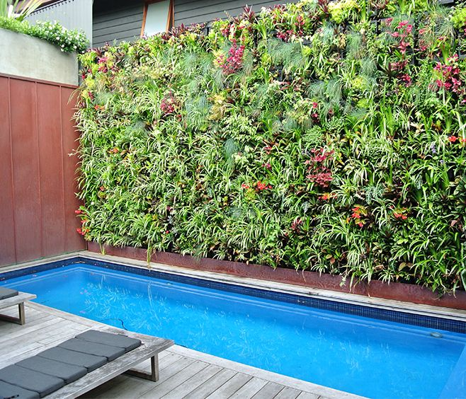 10 ideas about vertical garden systems on pinterest for The garden design team newark