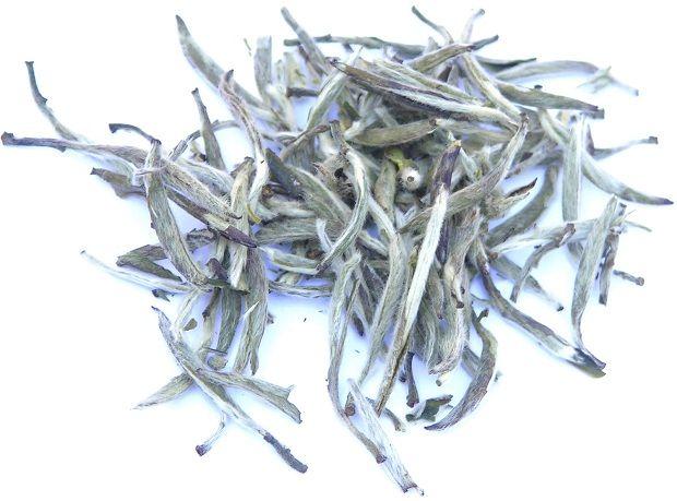 İpek Gibi Bir Cilt İçin: Beyaz ÇayYapılan bilimsel araştırmalar, beyaz çayın özellikle kolajen yıkımını baskılayıcı ve cilde esneklik veren elastin maddesinin yıkımını önleyen etkilerine bağlı olarak daha sıkı ve esnek cilt oluşumu sağlayabileceğini gösteriyor.      Beyaz çay, yeşil çay gibi vücutta yağ üretimini baskılayıcı ve mevcut yağın parçalanmasını sağlayıcı etkiye sahipir. Bu nedenle şişmanlık ve obeziteyle ilişkili sorunların tedavisinde yararlıdır.