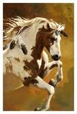 Love this!   Wildheart Prints by Carolyne Hawley