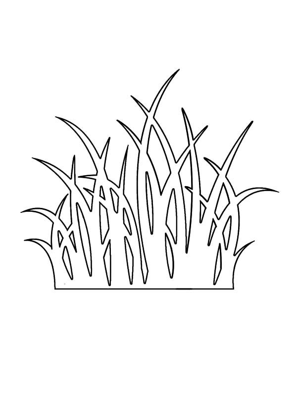 Pin On Grass Coloring Pages