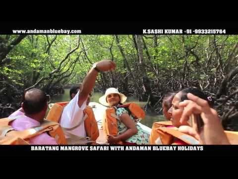 Baratang Mangrove Safari With Andaman Bluebay Holidays