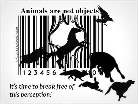 """an analysis of animal rights in the human society Animal rights: the history and nature of the beast the """"humane movement"""" has been hijacked, radicalized and rerouted started more than a hundred years ago, this movement traditionally was concerned with the humane treatment of animals."""
