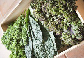 Découvrez tout sur le chou frisé, y compris des faits amusants, des variétés ,des informations nutritionnelles ,les avantages pour la santé et des recettes savoureuses .
