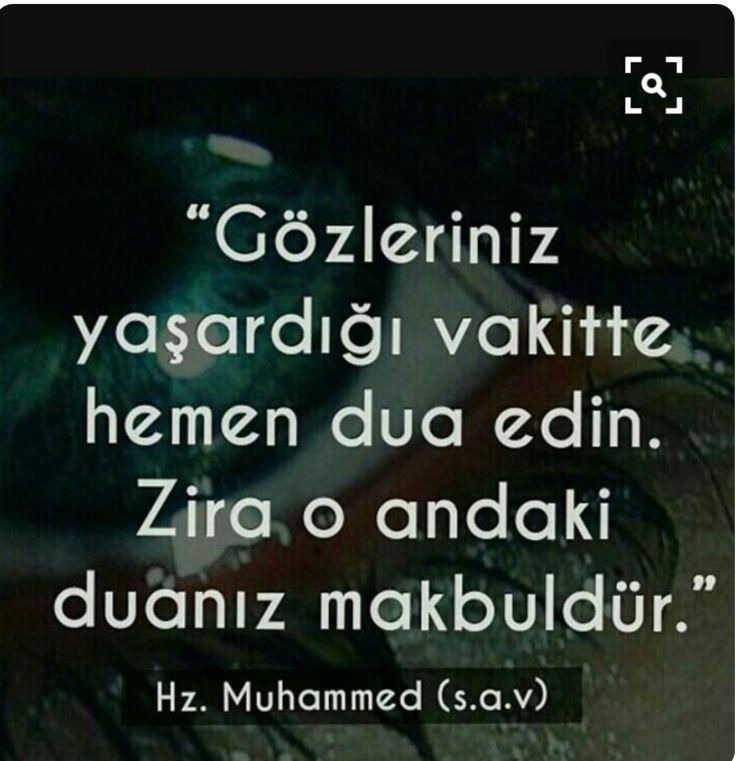 Hz. Muhammed s.a.v.