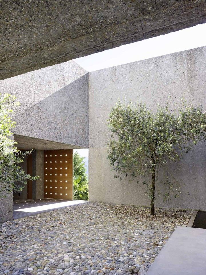 Entrance Courtyard of House in Brissago with Olive Tree