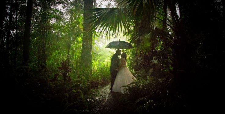 Rain & Fog in a Rainforest | Sunshine Coast Wedding Photography | Salt Studios