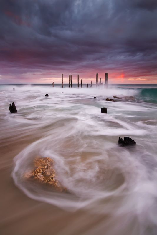 Dragon in the Sea by Dylan Toh  & Marianne Lim