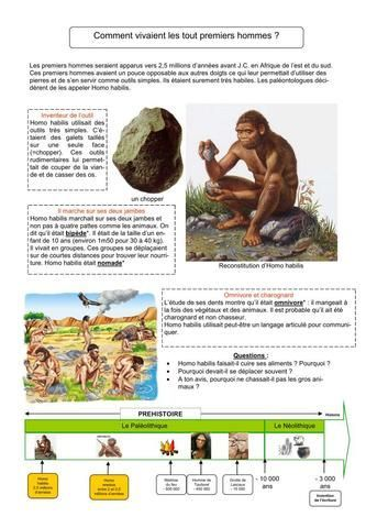 5 fiches sur la préhistoire