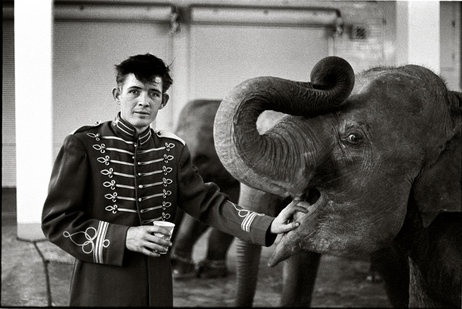 Dennis Darling: Elephant boy, circus, Atlanta, Ga., 1968