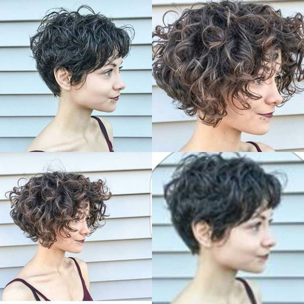 Curly Hairstyles Short In Back Long In Front Short Curly Haircuts Short Curly Hair Short Hair Styles