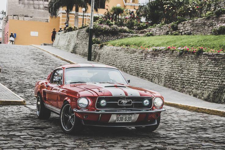 Mustang Fastback 1967 –   – Fotografie