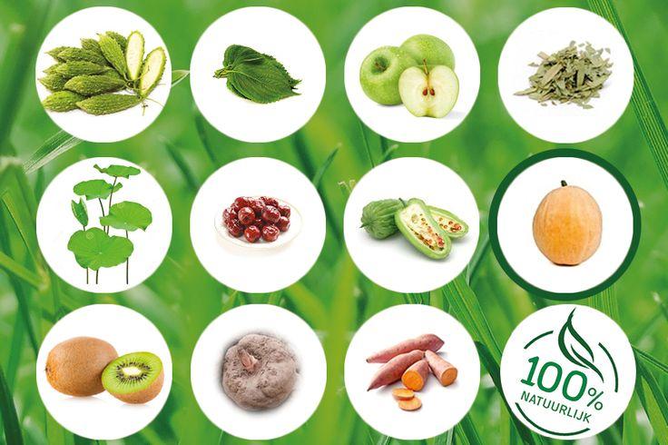 Wist je al dat BioSlimForte uit 100% natuurlijke producten bestaat? Zoals bijvoorbeeld Guttegom fruitvezels. Guttegom vermindert de opslag van koolhydraten en suikers in lichaamsvet, maar bevordert de omzetting ervan in glycogeen (reservesuikers). Hierdoor verbetert het fysieke prestatieniveau en wordt een snel dalende suikerspiegel opgevangen.. #BioSlankFact
