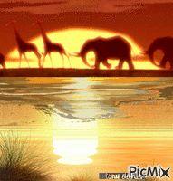 AFRICA  original backgrounds, painting,digital art by tonydanis GREECE HELLAS…