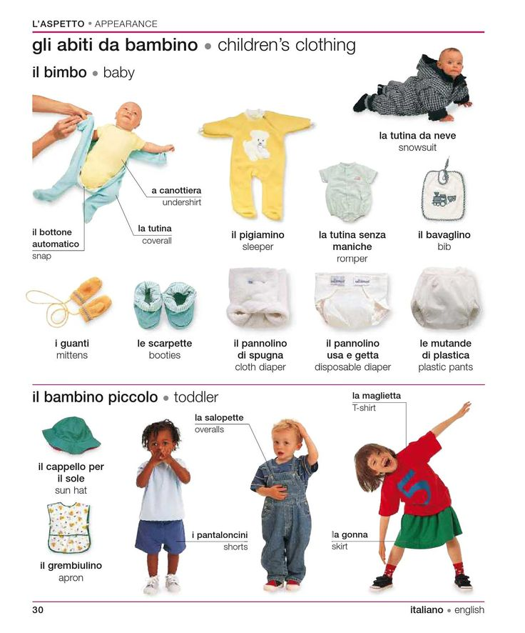 Learning Italian Language ~ Italian english visual bilingual dictionary