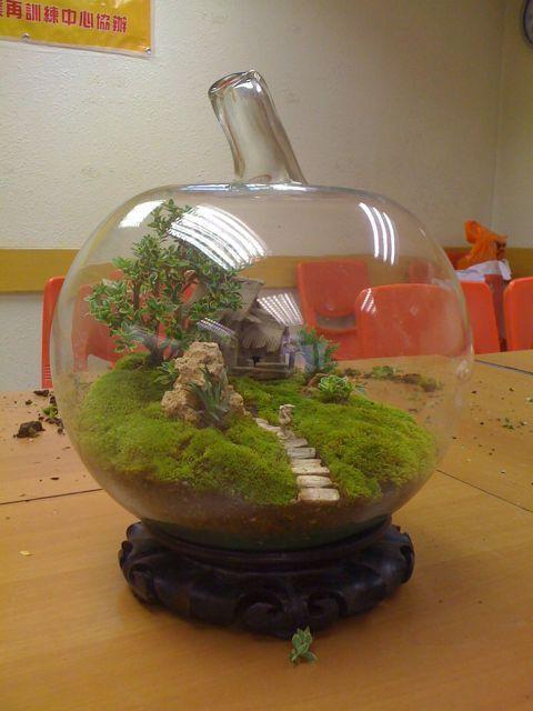 The Fern & Mossery: Bonsai Terrarium
