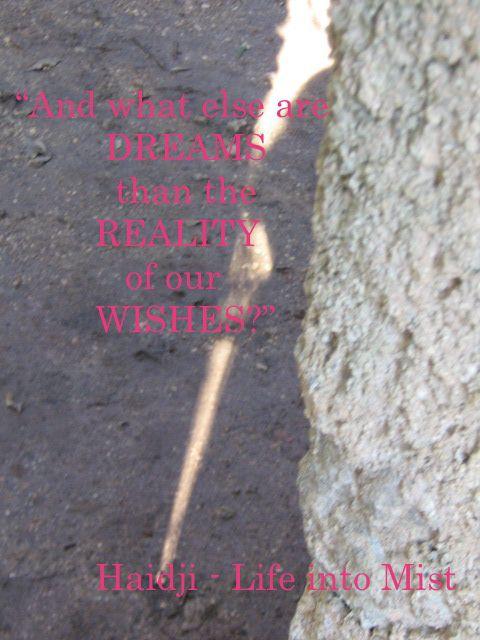 Haidji: Dreams - Book Quote - Life into Mist - Haidji