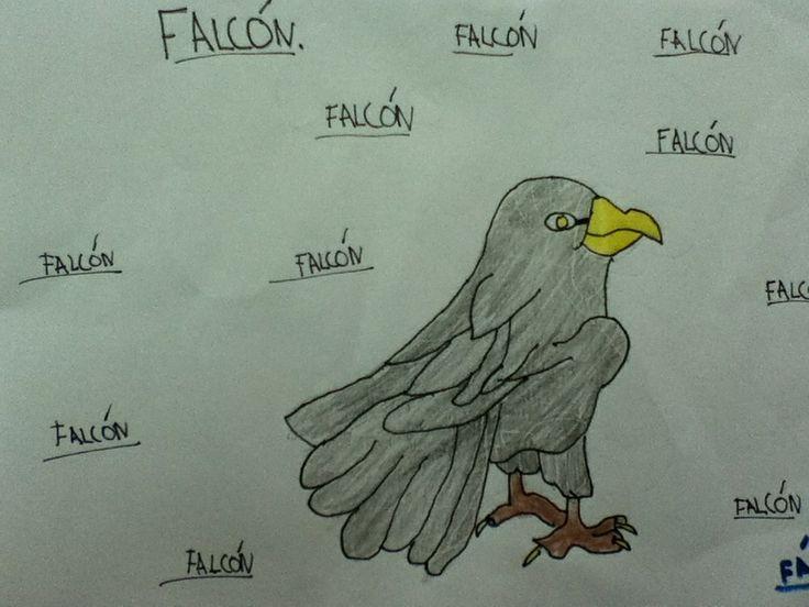 F...falcón: ave rapaz domesticable que se emprega na cetrería