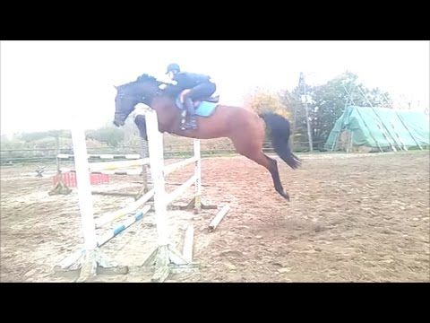 CHACCO BLUE JUMPING