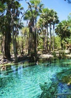 Manatrenka hot springs Darwin NT