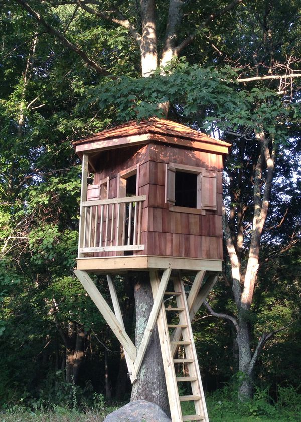 Tree House Photos Gallery  CT Tree House Brothers  Baby