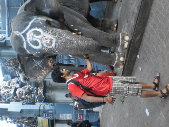 Playing with elephant god in Pondichery
