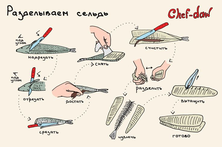 chef_daw_razdelivaem_seld