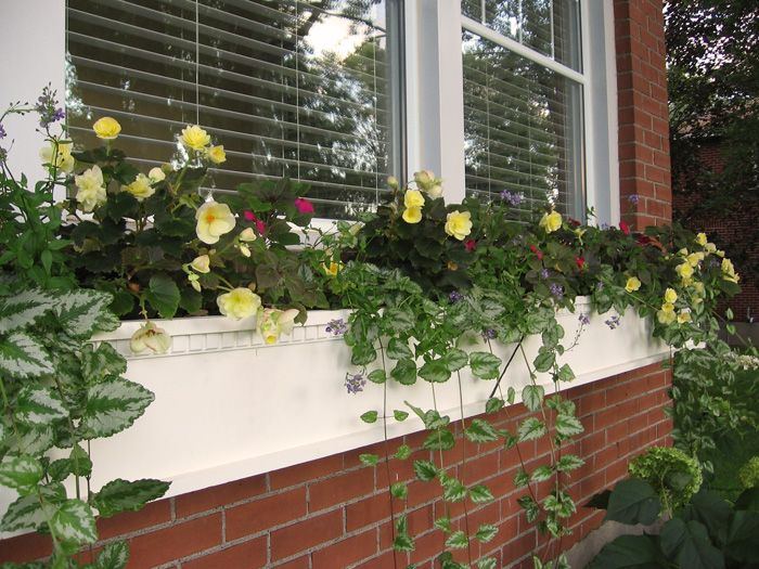 window box planters for brick homes the house inspired from a - Window Box Planters