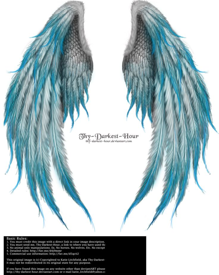 Winged Fantasy V2 - Phoenix Blue by Thy-Darkest-Hour on DeviantArt