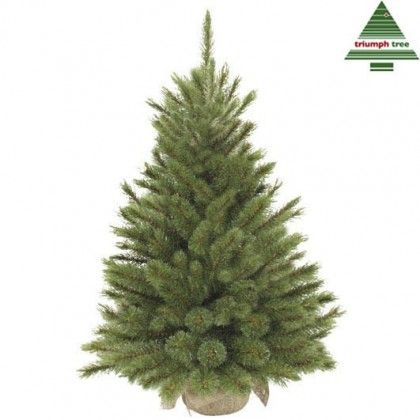 "Sapin artificiel ""Forest Frosted"" vert - 60 cm - TRIUMPH TREE"