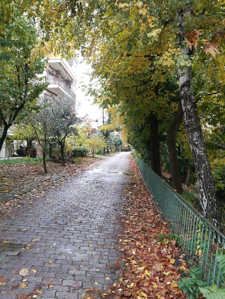 Autumn in Edessa city...