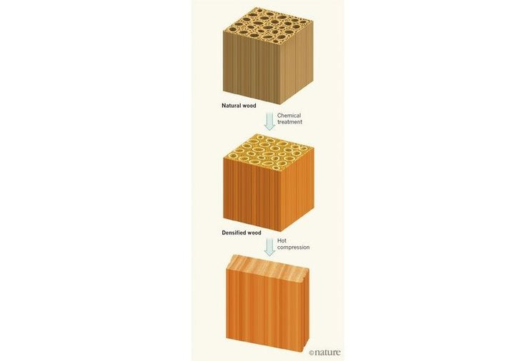 Could Super Wood Replace Steel in Cars Airplanes?  Researchers have found a way to make wood so strong that it could replace steel in any application including in cars and airplanes.  The researchers believe that the new process detailed in the journal Nature could make wood stronger than even many titanium alloys.  This new way to treat wood makes it 12 times stronger than natural wood and 10 times tougher said lead researcher Liangbing Hu Associate Professor at University of Maryland in…