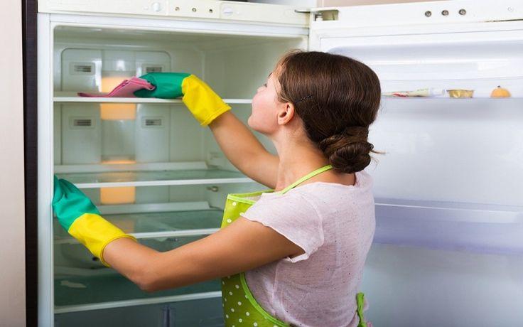 7 Tips for a Cleaner, Healthier RV Fridge