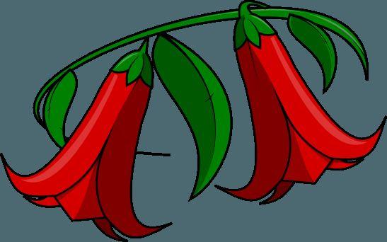 Copihue, Huasa y Huaso (Imagenes fiestas patrias Chile)