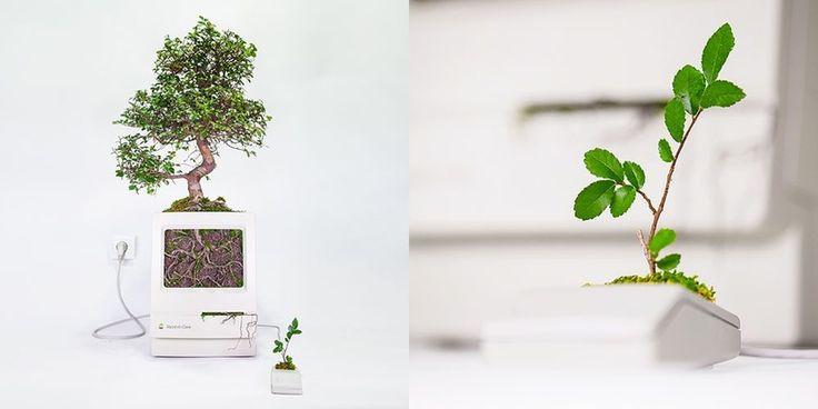 Artista francés convierte viejos Mac y ratones Apple en jardines - http://www.actualidadiphone.com/artista-frances-convierte-viejos-mac-ratones-apple-jardines/