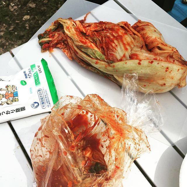 美味い(確信)  #お花見 #BBQ #バーベキュー #肉 #モリモリ食べ野菜 #酒池肉林 #木炭 #チャリで来た #桜 #キムチ #本場 #白菜