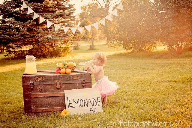 lemonade stand photography - Google Search