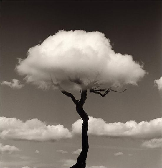 Creative Photographic Compositions by Chema Madoz | Inspiration Grid | Design Inspiration