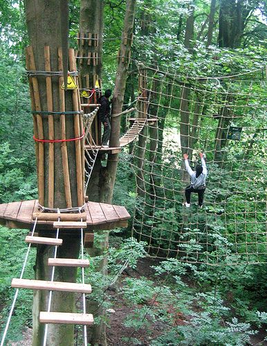 ropes course/ ziplining and then dinner @ mideval times