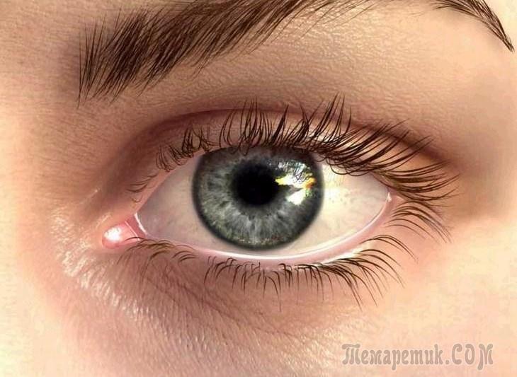 Появление первых морщин вокруг глаз говорит о начале возрастных изменений в организме. Нежная и тонкая кожа постепенно теряет свежесть, появляются темные круги, припухлости и отеки. Это вполне естеств...