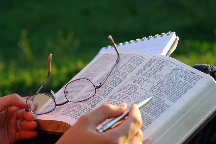 LQP: Las Escrituras y el pecado (Los beneficios de la l...
