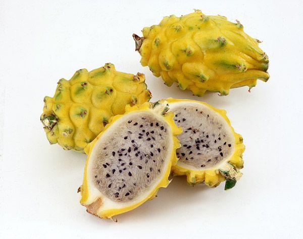 Superfruit Sunday - Top Ten Potential Health Benefits of Pitahaya (Dragon Fruit)