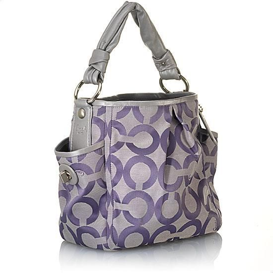 silver and purple coach ❤ www.healthylivingmd.vemma.com ❤