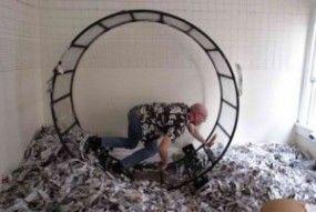 payday loan debt help
